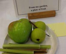 Wokingham Horticultural Association Show