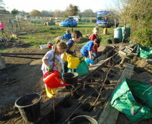Planting a Native Hedge 1