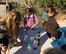 Geography   allotment (2)